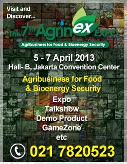 AGRINEX 2013